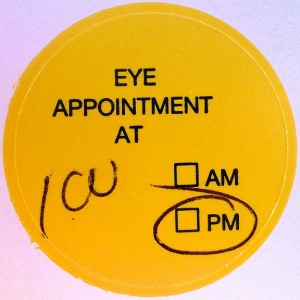 "Example of Dialog ""Making an Appointment"" in English"