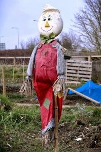 cerita kancil mencuri timun di sawah - in the farm with scarecrow